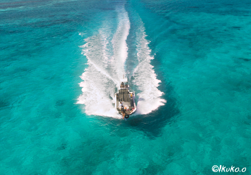 青い海を疾走するダイビングボート