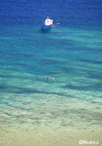 追い込み漁のボート