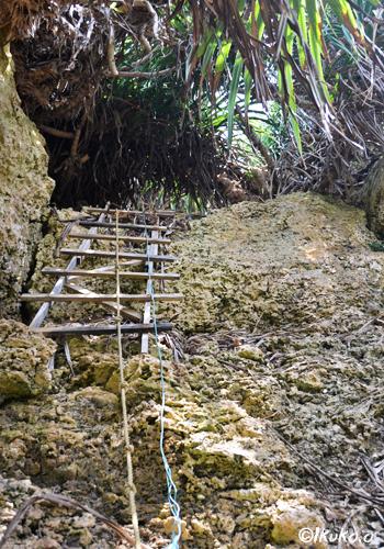 崖のロープとはしご