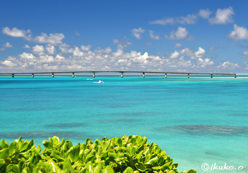 明るいブルーの海