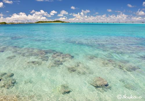 輝く青い海
