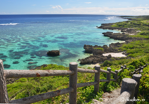 遊歩道から見たさんご礁の海