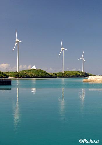 海に映る風車