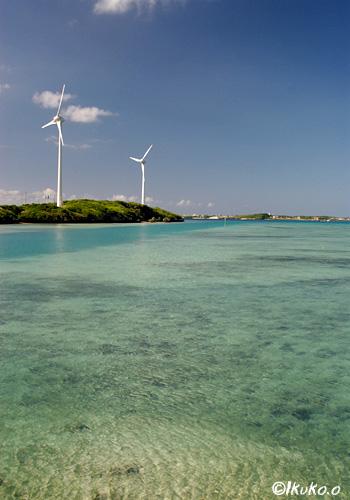 風車と海の風景