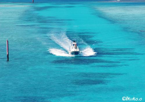 青い海を疾走する船