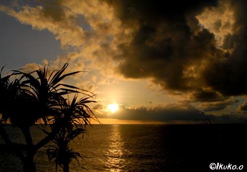 あだんと夕陽