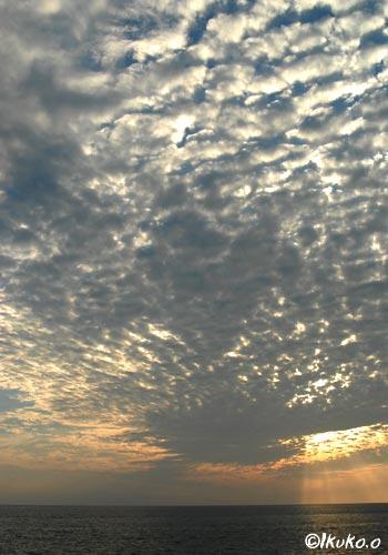 夕陽を包むうろこ雲