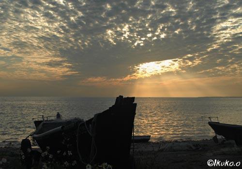 うろこ雲の中から射す夕陽