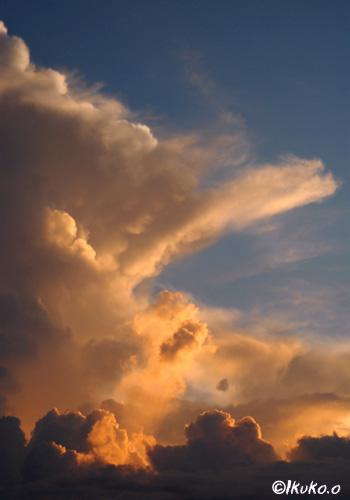 夕陽を受ける入道雲