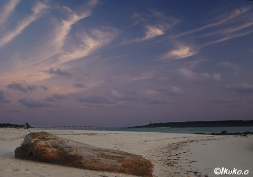 ピンクに染まる雲