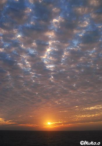 うろこ雲と太陽