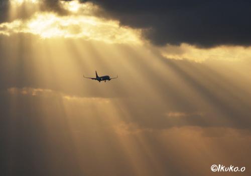 夕陽を浴びる飛行機
