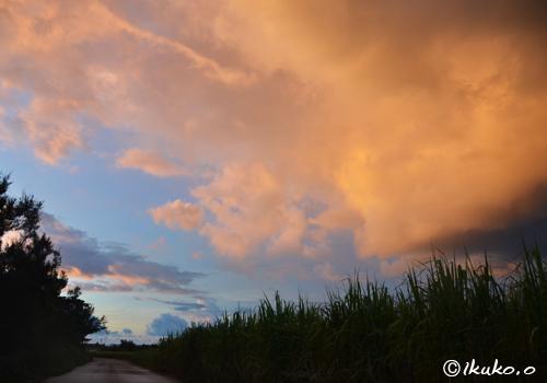赤く染まる入道雲
