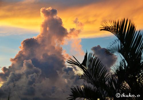 金色の帯と入道雲