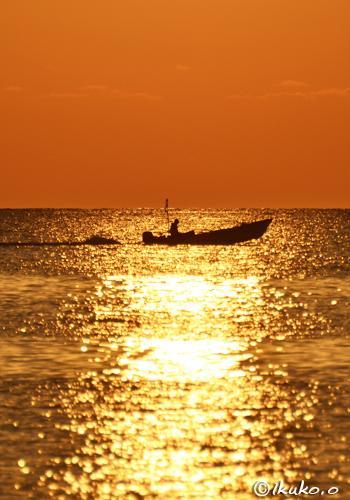 黄金色の海と漁船