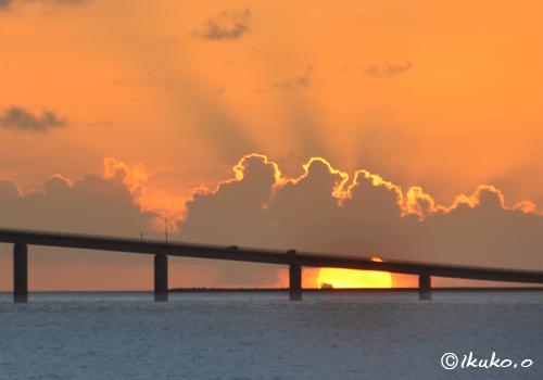橋桁の間に沈む夕陽