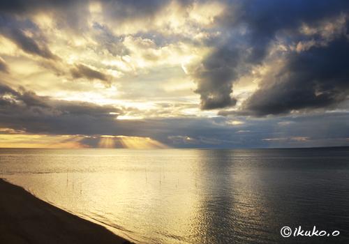 雲と黄金色の海