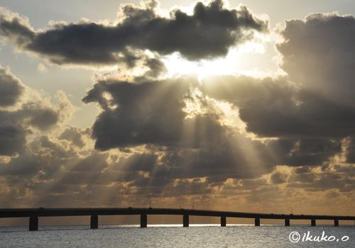 降り注ぐ光と輝く海