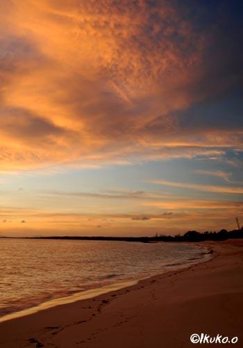 オレンジ色に染まるビーチ